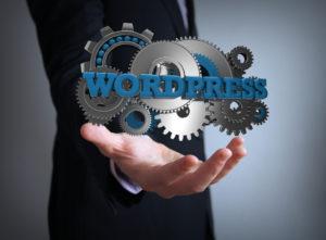 WordPress Scanner   ¿Qué es y cómo funciona?