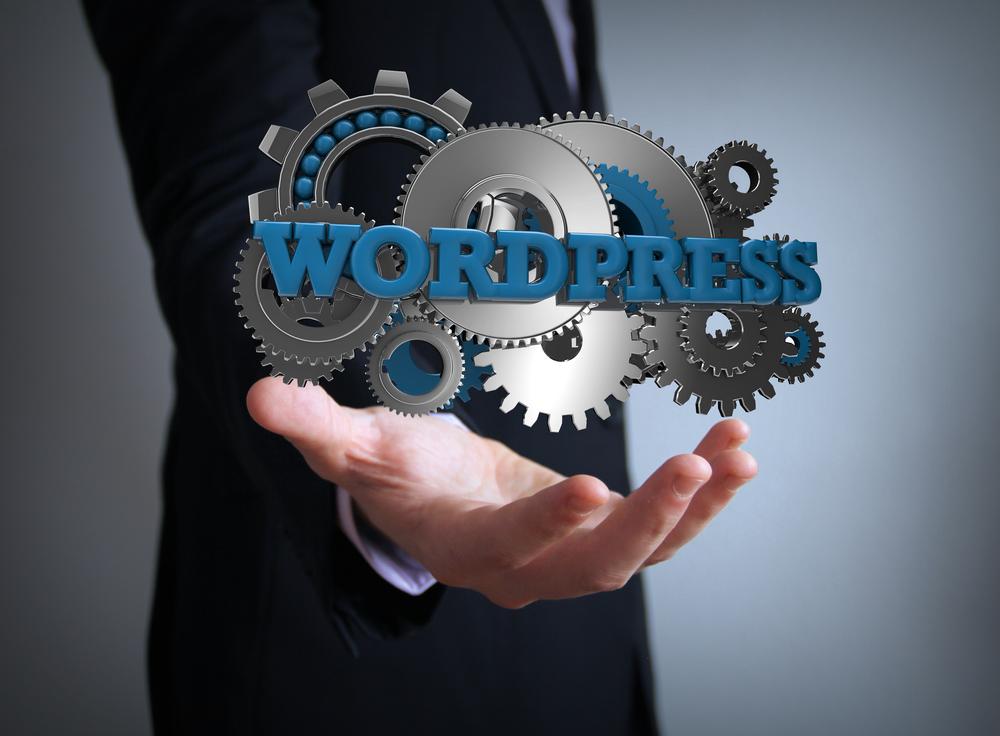 WordPress Scanner | ¿Qué es y cómo funciona?
