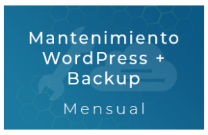 Backup Cloud 40Gb (Mensual)