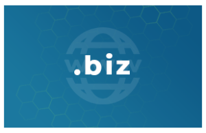 Contratación o renovación de un dominio .biz