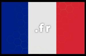 Contratación o renovación de dominio .fr (Francia)